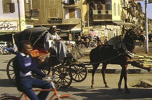 Luxor, horse-drawn carriage